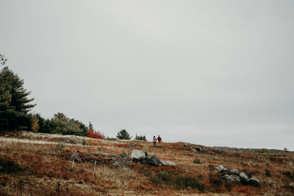 elliedamonerinwheatco-4762-1024x683 Eleanor & Damon | Autumn Lovers