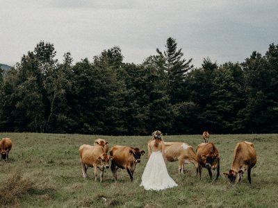 Danielle & Jamison | Windekind Farm Vermont Elopement