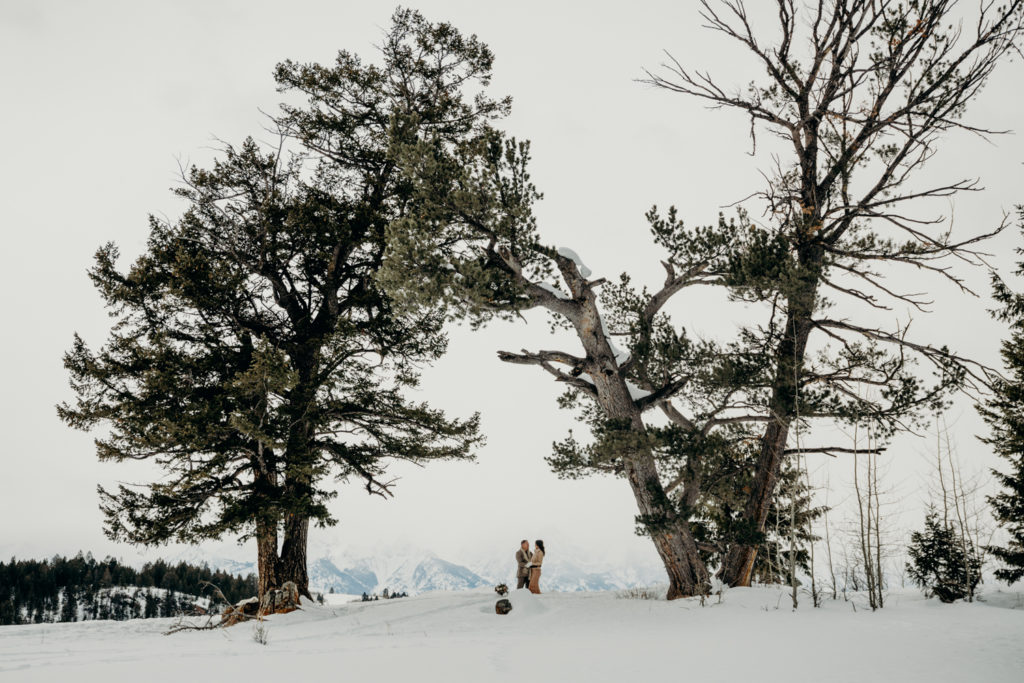 Couple in wedding attire embrace under the wedding tree outside of Jackson hole with a view of Grand Teton National Park