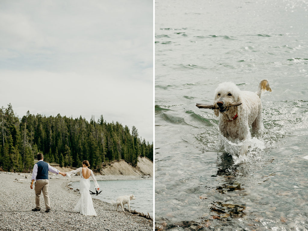 jenny lake wedding jackson hole