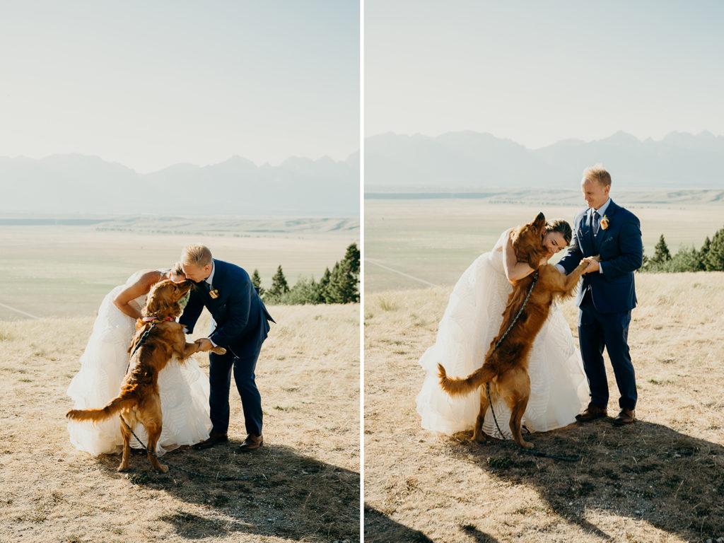 Jackson Hole Wedding with Dog