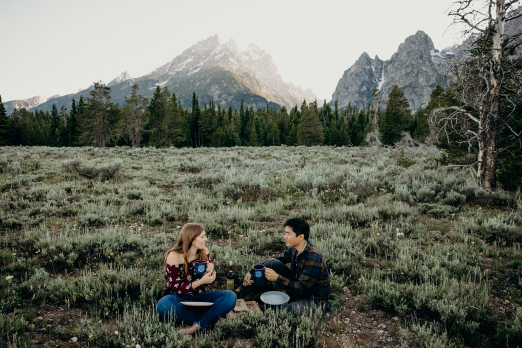 engagement in the tetons