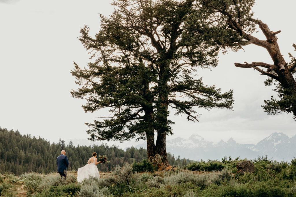 Wedding At The Wedding Tree in Jackson Hole
