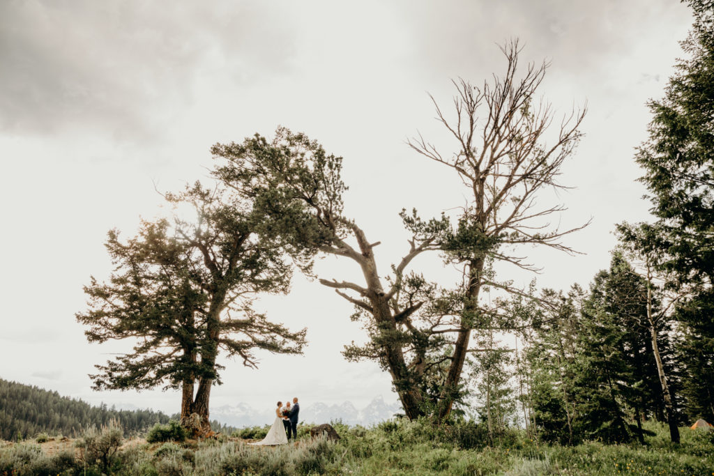 Elopement at The Wedding Tree